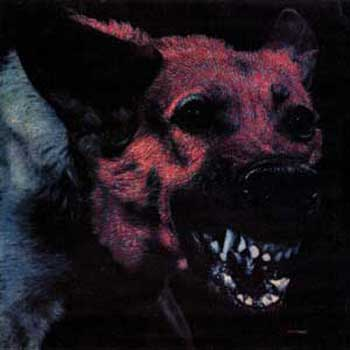 protomartyr-under-cover-of-official-right